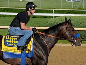 Pioneerof the Nile during morning gallop at Chrurchill Downs April 29