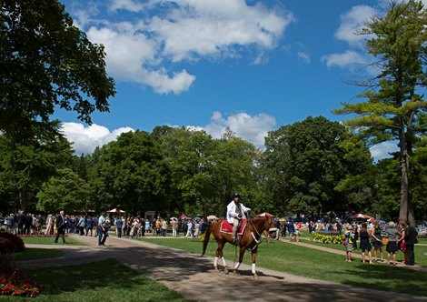 2019 Travers Day