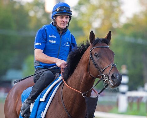 Catching Up With 2018 Breeders' Cup Classic Runners