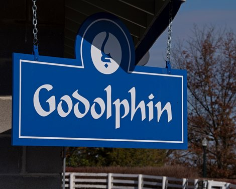 Godolphin Consignment Off to Strong Start