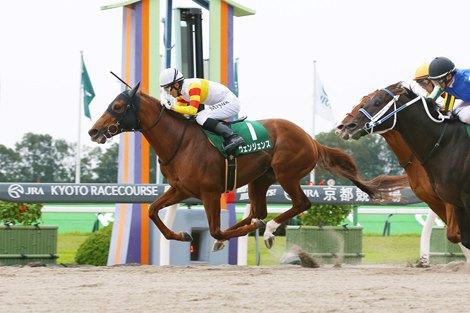 Vengeance wins the Miyako Stakes at Kyoto Racecourse