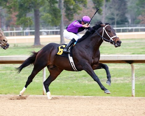 Warrior's Charge wins 2020 Razorback Handicap at Oaklawn Park