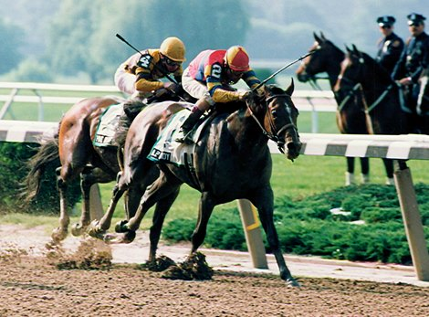 A.P. Indy wins the 1992 Belmont Stakes
