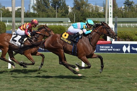 La Signare wins the 2020 Sand Springs Stakes at Gulfstream Park
