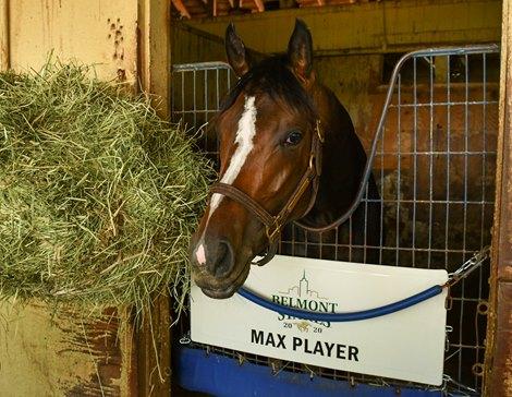 Max Player - Belmont Park, June 19, 2020