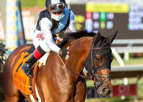 Jockey Drayden Van Dyke guides Red Lark to the winner's circle after their victory in the Grade I, $250,000 Del Mar Oaks, Saturday, August 22, 2020 at Del Mar Thoroughbred Club, Del Mar CA. © BENOIT PHOTO