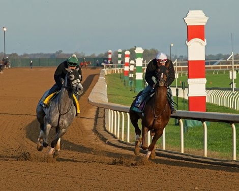 (L-R): Tacitus and Channel Maker working.<br> Breeders' Cup horses at Keeneland in Lexington, Ky. on November 1, 2020.