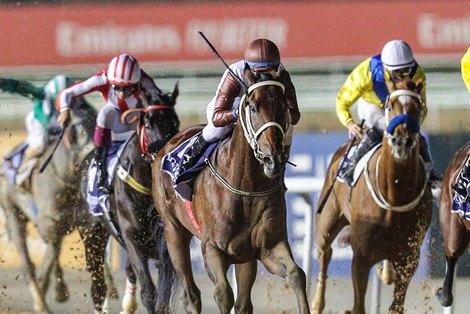 El Patriota (Antonio Cintra Pereira – Vagner Leal) wins the Al Bastakiya Trial Presented By Longines, 1900m dirt race, at the second Dubai World Cup Carnival on January 28, 2021