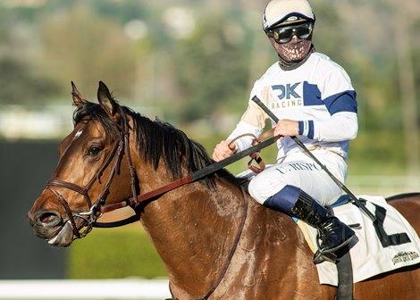 Jockey Umberto Rispoli guides Hit the Road to the winner's circle after their victory in the Grade III, $100,000 Thunder Road Stakes, Saturday, February 6, 2021 at Santa Anita Park, Arcadia CA. © BENOIT PHOTO