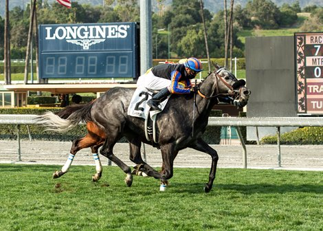 Gregorian Chant wins 2021 San Simeon Stakes at Santa Anita Park