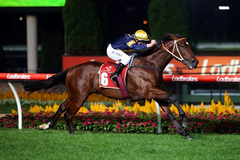 Masked Crusader wins the 2021 William Reid Stakes at Moonee Valley Racecourse<br>