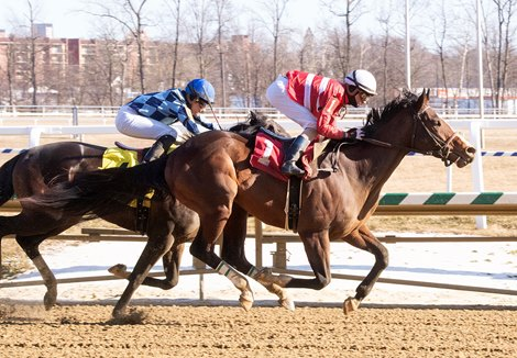 Exculpatory - Maiden Win, Laurel Park, March 5, 2021