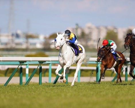 Sodashi wins the Oka Sho (Japanese One Thousand Guineas) Sunday, April 11, 2021 at Hanshin Racecourse