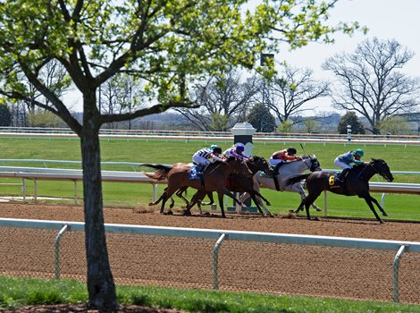 Race 2 with Rising Seas on the lead in the stretch.<br> Scenes from opening day at Keeneland near Lexington, Ky., on April 2, 2021.