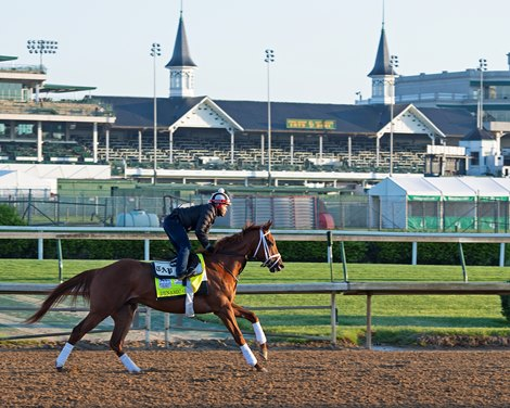 Dynamic One<br>