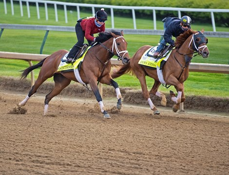 (L-R): Sainthood and Known Agenda working<br>