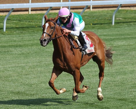 Pocket Square wins an allowance race Wednesday, April 7, 2021 at Keeneland