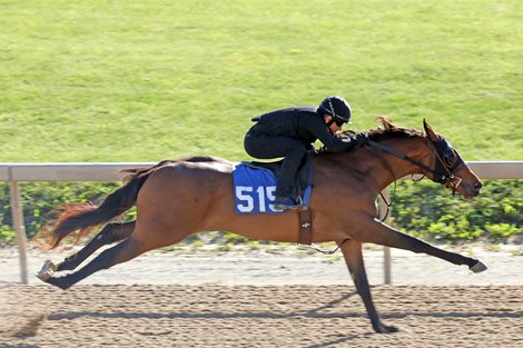 Hip 515 breezes 1/8th in 10 flat, 2012 Fasig-Tipton Midlantic 2 Year Olds in Training Sale