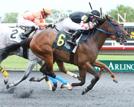 Guest Suite wins 2021 Hanshin Cup Stakes at Arlington Park