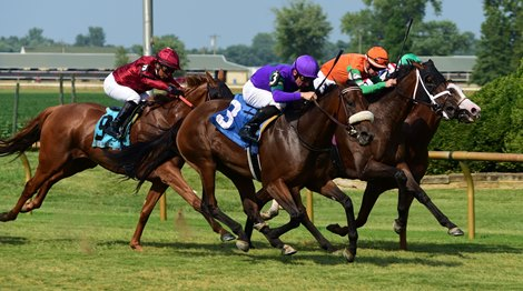 She'sonthewarpath wins the KY Downs TVG Preview Ladies Mile Stakes Sunday, August 8, 2021 at Ellis Park