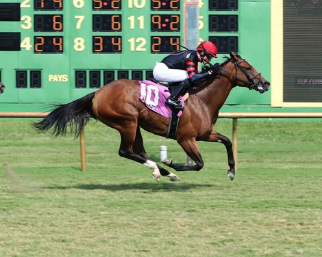 Yes It's Ginger wins the KY Downs TVG Preview Ladies Sprint Stakes Sunday, August 8, 2021 at Ellis Park